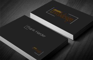 Business Card Creative Webdesign