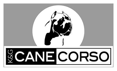 K&G Cane Corso